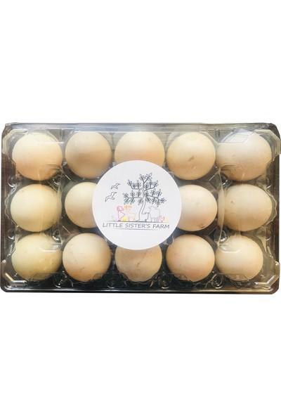 Little Sister's Farm Ördek Yumurtası 15'li