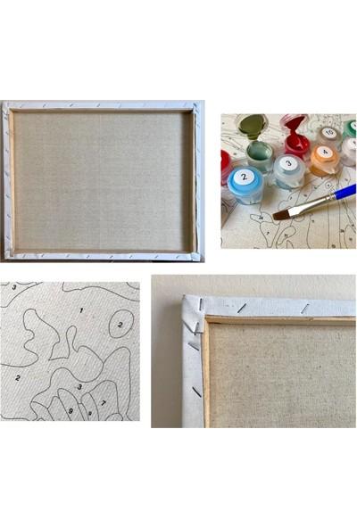 Tale Hobby Sayılarla Boyama Hobi Seti - Büyük Ölçü Çerçeveli - Romantik Renkli 60 x 75 cm