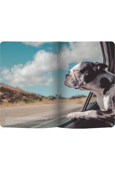 Le Color Esnek Kapakak Defter 144 Sayfa Dog Lover 10.5 x 18.58 cm