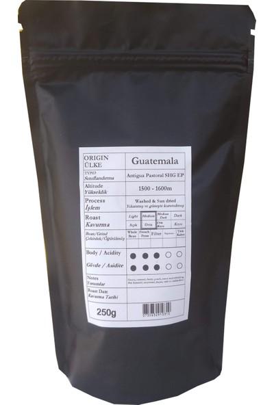 Profusion Coffee Taze Kavrulmuş Guatemala Antigua Pastoral Kahve Çekirdek (Öğütülmemiş)