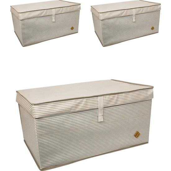 ALAS 3 Adet Kapaklı Çok Amaçlı Hurç Kutu Mega 60 x 40 x 30 cm Kahverengi