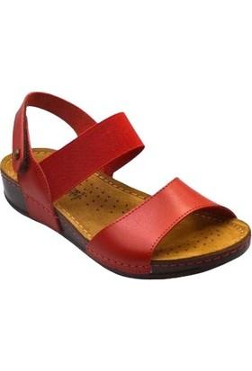 Biocomfort 0109 Kadın Yazlık Sandalet