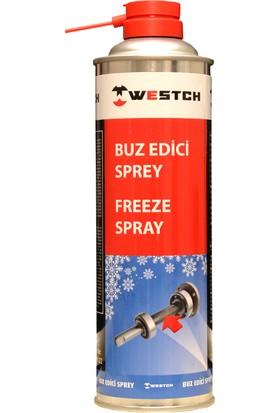 Westch Buz Edici Sprey 500 ml