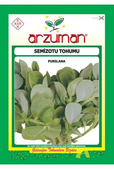 Arzuman Semizotu Tohumu 25 gr