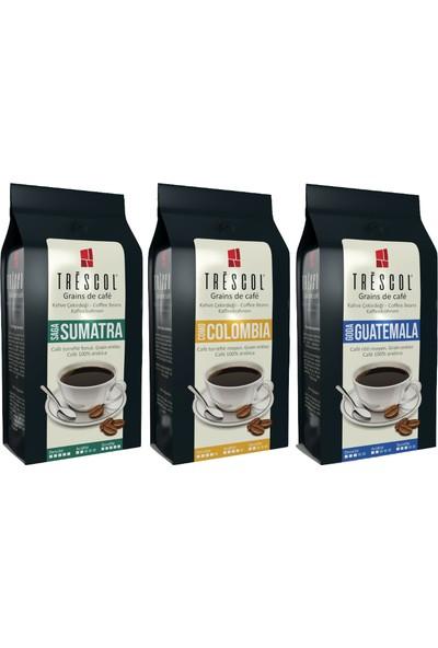 Trescol Filtre Kahve Barista Bianca Harmanı Kağıt Filtre Için Öğütülmüş (Sumatra-Colombia-Guatemala) 3 x 250 gr