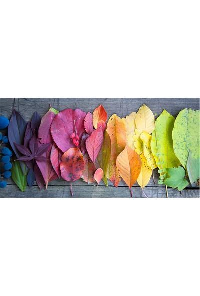 Hobi Butik Kurutulmuş Renkli Yapraklar Duvar Dekorasyon Moda