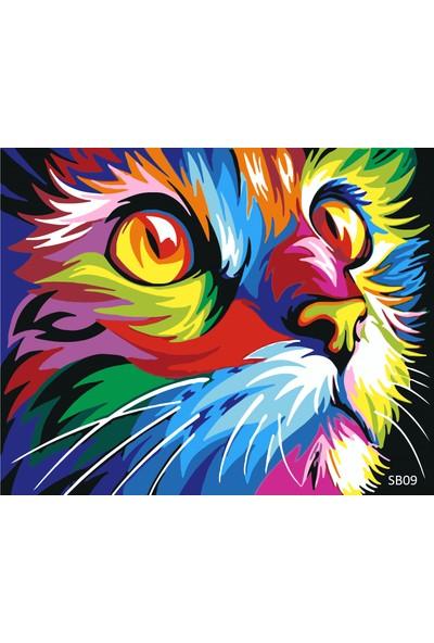 Plus Hobby SB09 Kedi Figurü Sayılarla Boyama Seti 40 x 50 cm