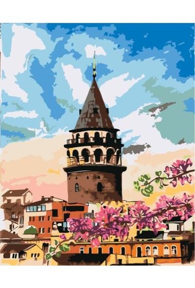 Plus Hobby SB13 Galata Kulesi Sayılarla Boyama Seti 40 x 50 cm