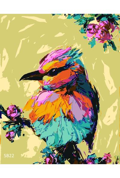 Plus Hobby SB22 Kuş Figürü Sayılarla Boyama Seti 40 x 50 cm