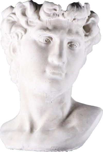 Ercans Garden Dekoratif Saksı Antik Sezar 27 x 23 x 12,5 cm cm