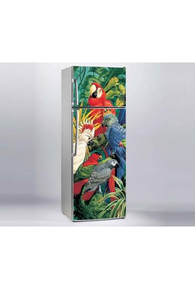 Jasmin Buzdolabı Sticker Papağanlar