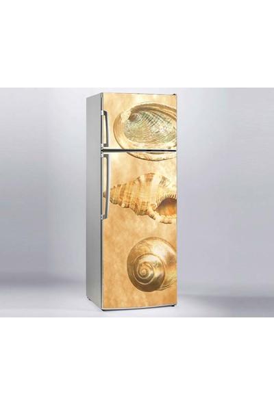 Jasmin Buzdolabı Sticker Deniz Kabukları