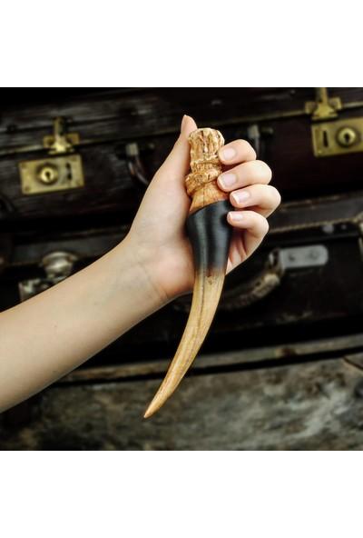 Büyücü Sokağı Basilisk Dişi Harry Potter