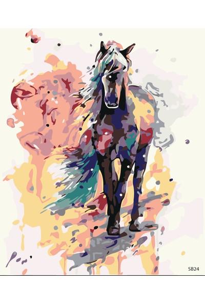 Plus Hobby SB24 Renkli At - Sayılarla Boyama Seti 40 x 50 cm