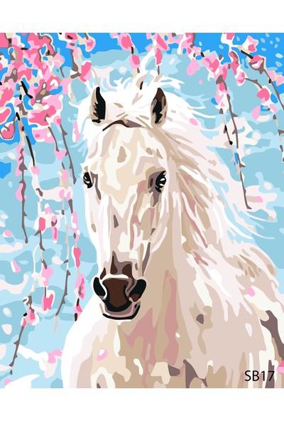 Plus Hobby SB17 Beyaz At - Sayılarla Boyama Seti 40 x 50 cm
