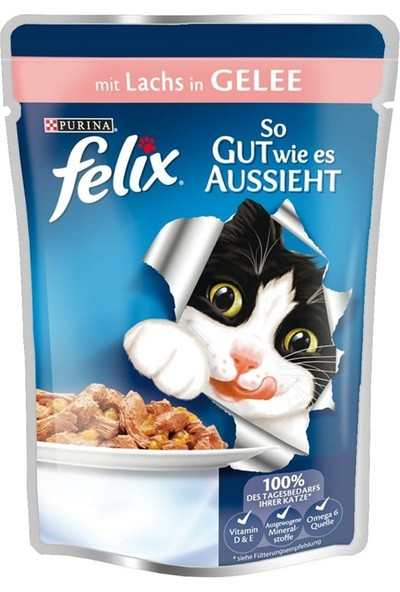 Felix Somonlu Kedi Yaş Maması 100 gr