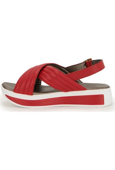 U.S. Polo Assn. Kırmızı Ayakkabı 50222291-VR030
