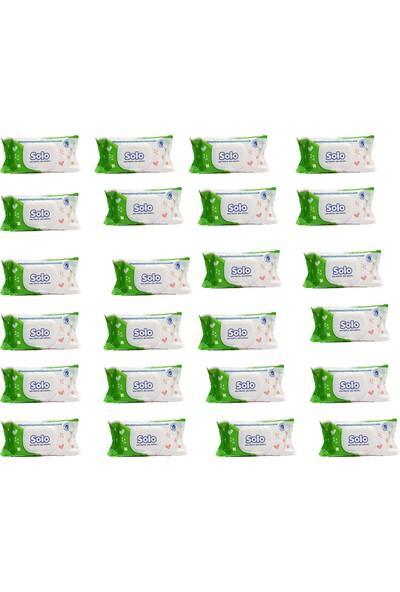 Solo Bahar Tazeliği Islak Havlu 60'lı 24 Paket 1440 Yaprak