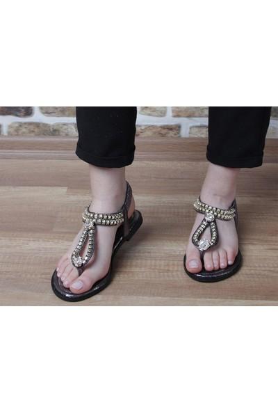Pierre Cardin Kadın Taşlı Sandalet (6523)