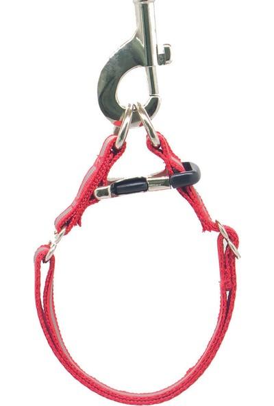 Petviya Reflektörlü/yansıtıcılı Köpek Boyun Tasması Kırmızı