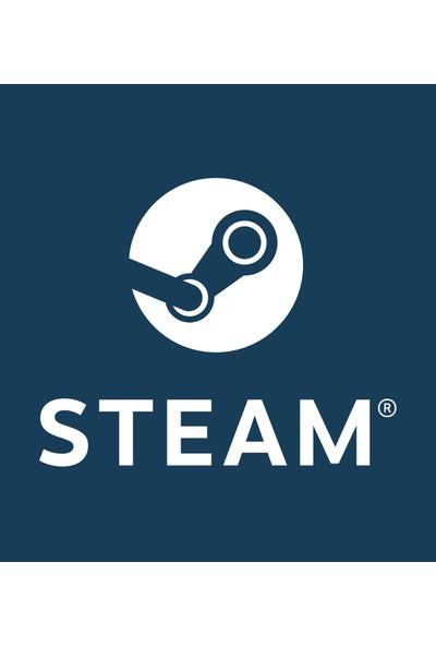 Steam 10 TL'Lik Cüzdan Kodu