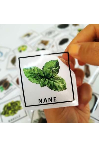 Dijitalya Kavanoz Etiketleri Baharat Takımı 42 Adet Kavanoz Sticker Seti