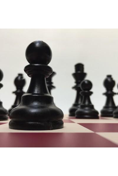 Yeni Satranç Profesyonel Satranç Takımı Şah Boyu 94 mm 5'li