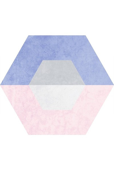 Codicer Spectrum Hex 22 x 25 cm Mix Altıgen Seramik