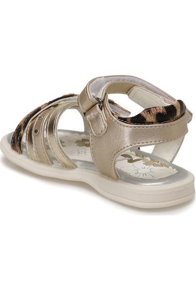 Seventeen XDB127-70178-YD39 Altın Kız Çocuk Sandalet