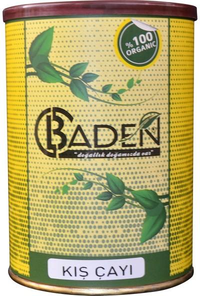 Baden Kış Çayı
