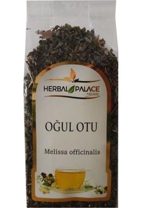 Herbal Palace Oğul Otu Yaprağı 40 gr