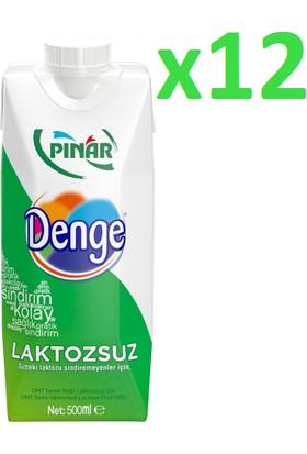 Pınar Denge Laktozsuz Süt 500 ml 12'li
