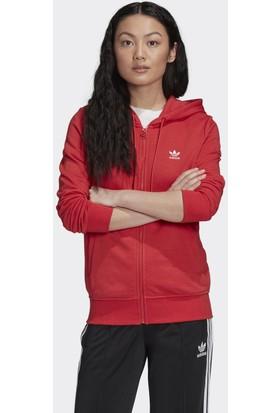Adidas Kadın Sweatshirt GD4340