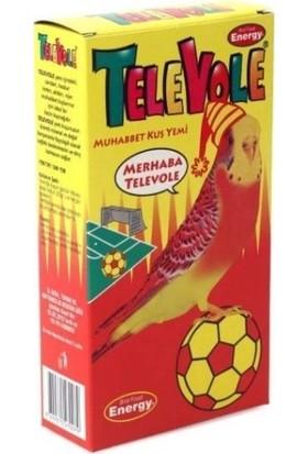 Pet Food Energy Televole Muhabbet Kuş Yemi Gs 300 gr