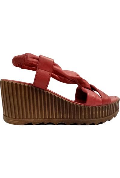 Riccardo Colli 2002 Kadın Sandalet