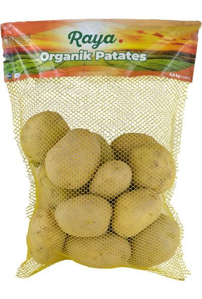 Raya Organik Patates