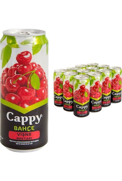 Cappy Vişneli Meyve Suyu İçecek 330 ml x 12
