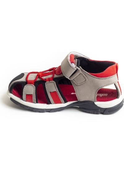 Minipicco Unisex Çocuk Gri Deri Outdoor Sandalet