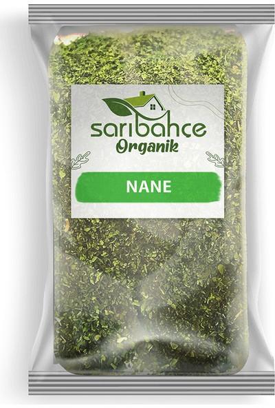 Sarıbahçe Nane 100 gr