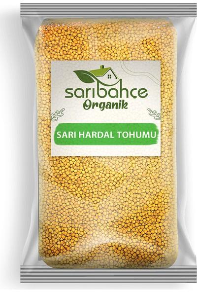 Sarıbahçe Sarı Hardal Tohumu 100 gr