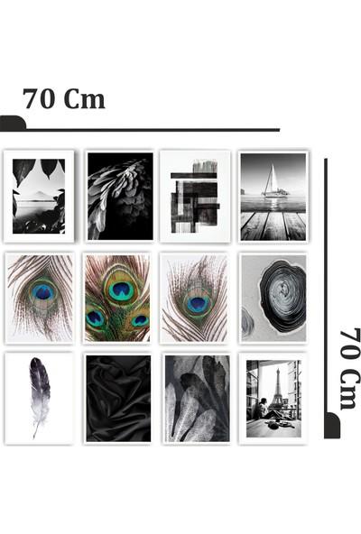 Dekorasna 12 Parça Çerçeve Görünümlü Mdf Tablo RMD11