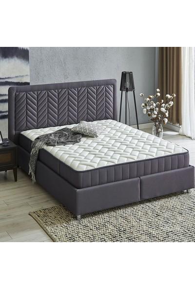 Yataş Bedding Somni - Valery Baza Başlık Seti (Tek Kişilik - 120X200 cm Kumaş - Marin)