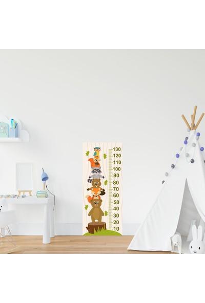 Jasmin Çocuk Odası Bebek Odası Hayvan Boy Cetveli Boy Ölçer Sticker