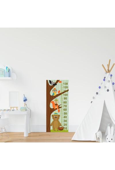 Jasmin Çocuk Odası Bebek Odası Ağaçta Hayvanlar Boy Cetveli Boy Ölçer St
