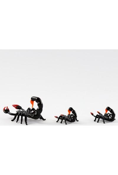 Adamodart Siyah Akrep Cam 3 lü Biblo