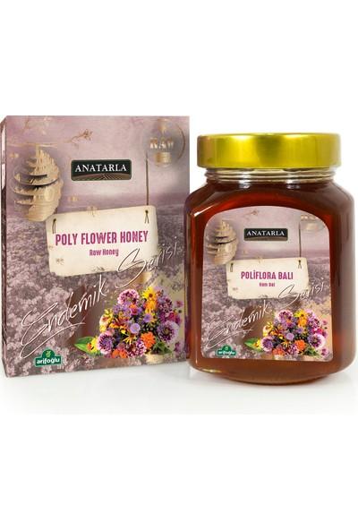 Arifoğlu Anatarla Poliflora Balı 430 gr Ham Bal