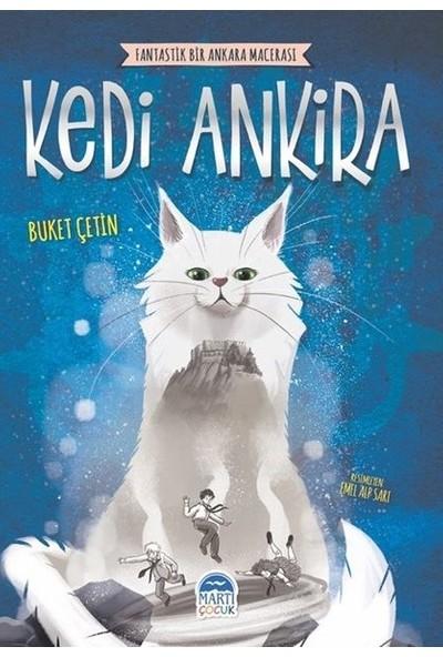 Kedi Ankira - Buket Çetin