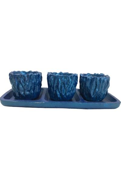 Bitki Tasarımı Beton Saksı Mavi