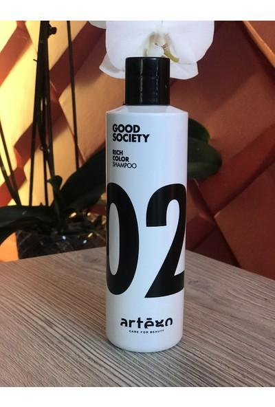 Artego Good Society 02 Rıch Color Shampoo 250 ml