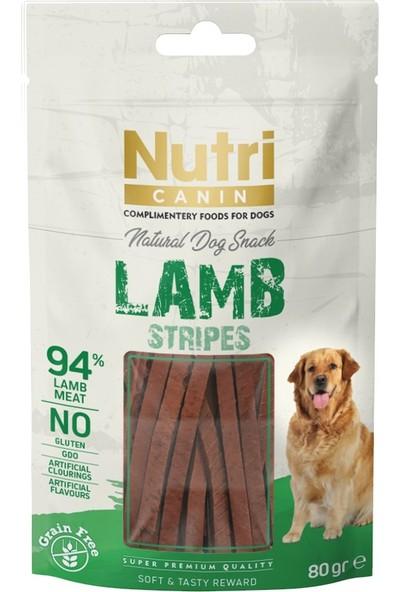 Nutri Canin Natural Dog Snack Lamb Tahılsız Kuzulu Ödül 80 G